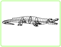 Alligator Aquatic Animal Topiary Frame