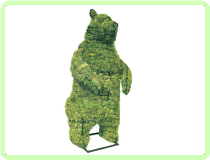 Bear, Standing Animal Topiary Frame
