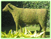 Cow Animal Topiary Frame