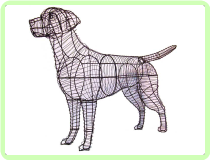 Retriever, Labrador Animal Topiary Frame