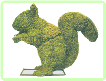 Squirrel Animal Topiary Frame