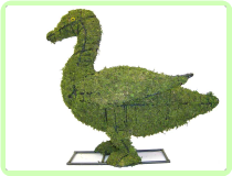 Duck Animal Topiary Frame