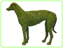 "Greyhound Animal Topiary Frame 37"" x 45""x 11"""