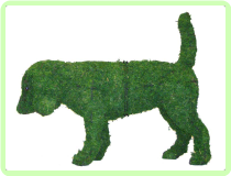 Beagle Animal Topiary Frame 21x24x7