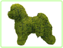 Bichon Frise Animal Topiary Frame