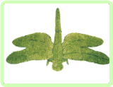 Dragonfly Insect Topiary Frame