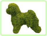 Bichon Frise Animal Topiary Frame (Mossed)