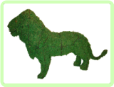 Lion Animal Topiary Frame (Mossed) 25x37x12