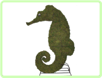 "Seahorse Aquatic Animal Topiary Frame 24""x 16"" x 6"""
