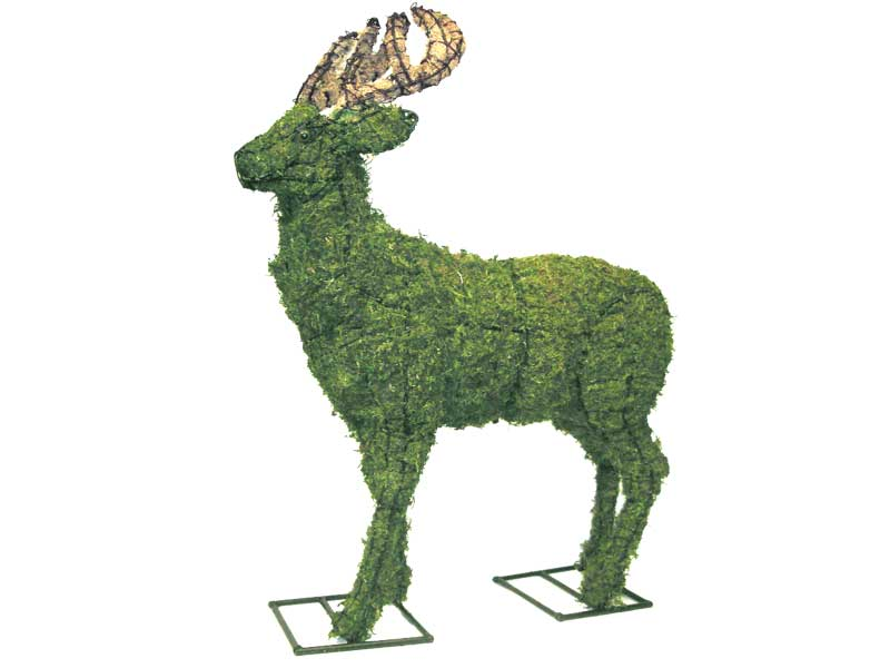 Deer Animal Topiary Frame