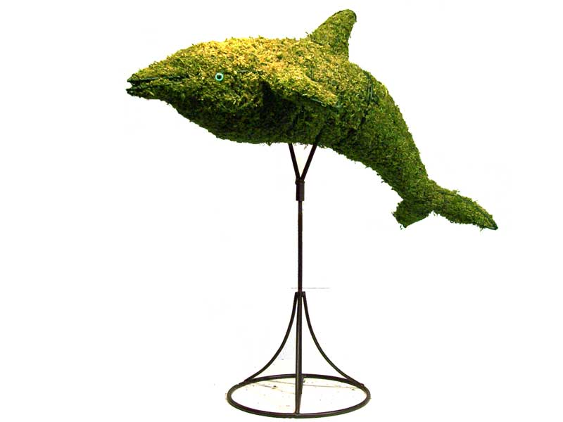Dolphin Aquatic Animal Topiary Frame