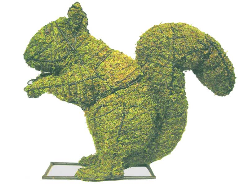 How To Make Topiary Animals Part - 31: Squirrel Animal Topiary Frame